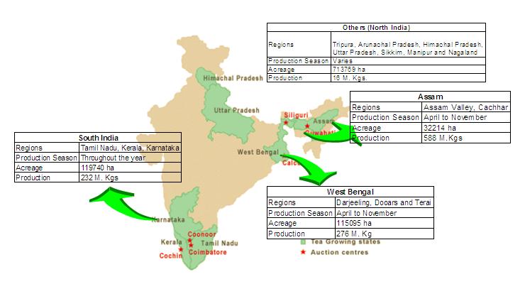 Tea Growing Regions